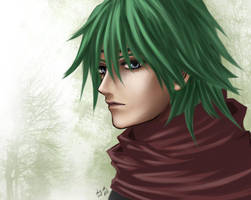 Fire Emblem If/Fates: Kaze by deviousXgirl