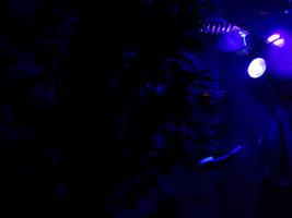 Cannabis Can UV Nightlight by transmitdistort