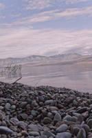 Yellowstone? Graystone... by brayden1313