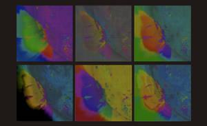Sdo Warhol Black background by eitv3