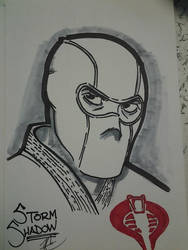 Storm Shadow by AC009