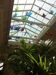 Hanging Butterflies at the Gardens by hershey990