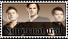 Supernatural Stamp by ttinatina5252