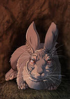 Watership Down - The Chief Rabbit by LadyFiszi