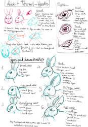 Rabbit Drawing tutorial pt1 - Characteristics by LadyFiszi