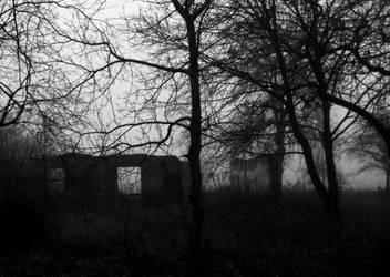 Where the fog dwells... by 0IZ