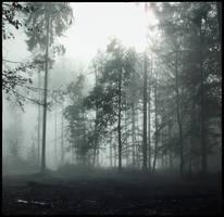Storming Through White Light by 0IZ