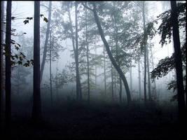 Beyond the Veil by 0IZ