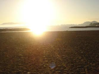 Sunset Sun by Animally