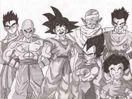 DBZ-Z fighters by superheroarts