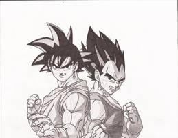 Goku and Vegeta by superheroarts
