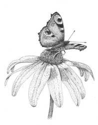 Butterfly Inachis Io by akari-hino