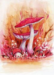 Autumn mushrooms by MaryIL