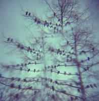Birdiestree by million-dandelions