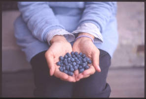 Blueberries by million-dandelions