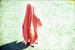 muhomor by million-dandelions