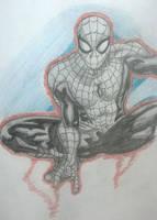 Requested Spiderman by XSlappyTheDummyX