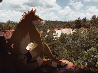 Providence Canyon by canine-jaws