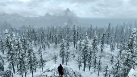 The Beauty of Skyrim 4 by HelixIce