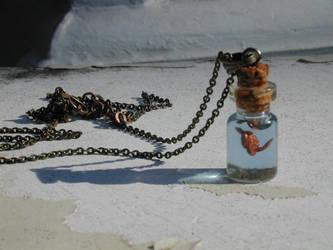 My Tiny Sea Turtle in a bottle by jen4eternity
