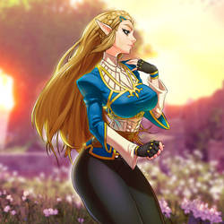 Zelda Botw by louten