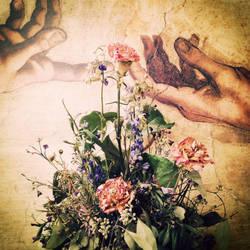 Dead alive flowers by CreoleFleur