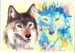 A wolf and his spirit by red-fox-child