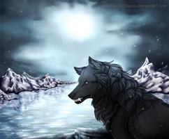 Wintersun by Lunegrimm