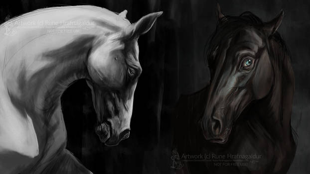 Horse studies by Lunegrimm