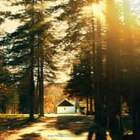 autumn walk by fruitpunch1