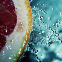 Grapefruit 2010 by xTive