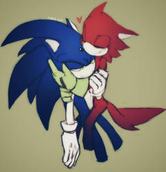 Sonic and Rookie  by PiRoG-Art