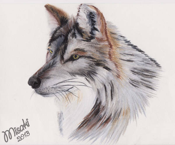 Wolf drawing- speciale Wolf. by ShadowFox-Cosplay