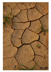 cracks by bumorticc