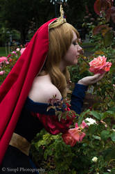 A Prince and his Rose by PrincessofTeaCosplay
