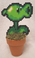 Peashooter Perler by DuctileCreations