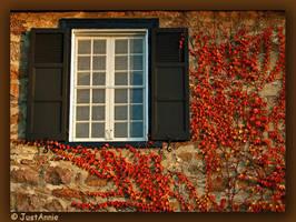 New window by Justannie