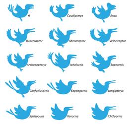 A Field Guide to Mesozoic Twitter Birds by Albertonykus