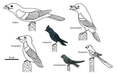 A Flock of Buzzers by Albertonykus