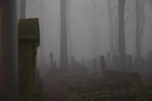 Jewish Cemetery by homik126