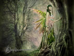 Tree Elf by LeenaHill