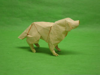 Golden Retriever by Blue-Paper