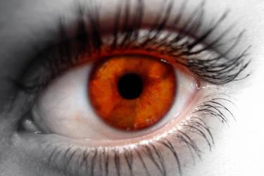 Orange Eye by Weksart