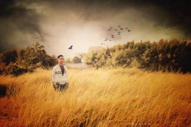 Hocmon field! by Nuzoom