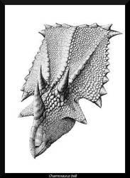 Chasmosaurus belli by WaylonRowley