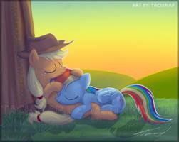Applejack And Rainbow Dash by Fecu