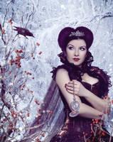 Lady Winter by FoxyM8