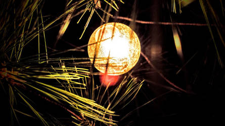 Hidden Lights by StormClaw112