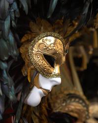 Carnival of Venice 2006 V by vdsphoto