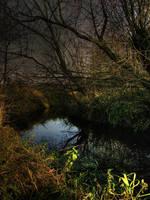 River - Rzeka 5 by mateuszskibicki1